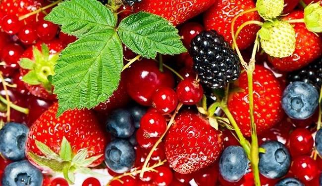 Как правильно высушить ягоды на зиму: некоторые хитрости от судьи МастерШеф
