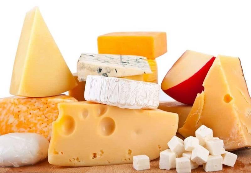 Какой сыр поспособствует снижению веса: нутрициолог раскрыла важные нюансы