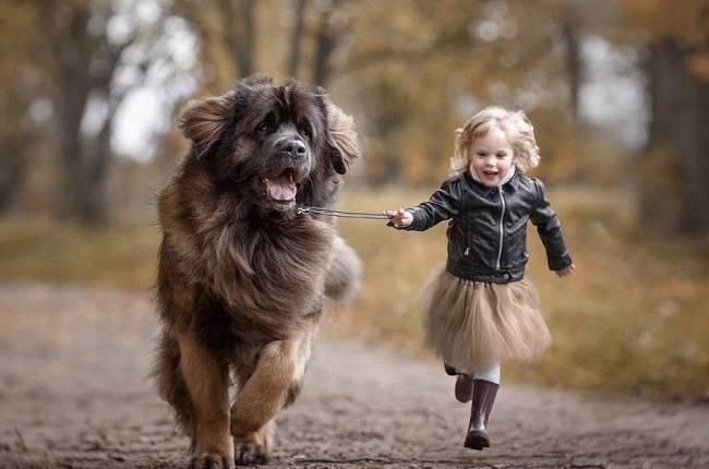 Ученые рассказали, как и почему собака поможет развитию вашего ребенка