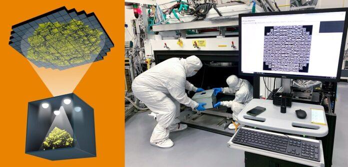 Мощнейшей фотокамерой на 3200 Мп ученые сфотографировали кочан капусты