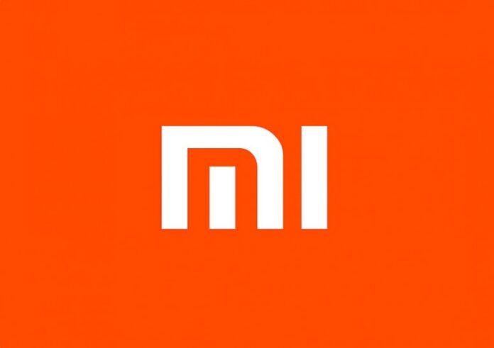 Xiaomi Mi 11 Pro получит самую необычную заднюю панель