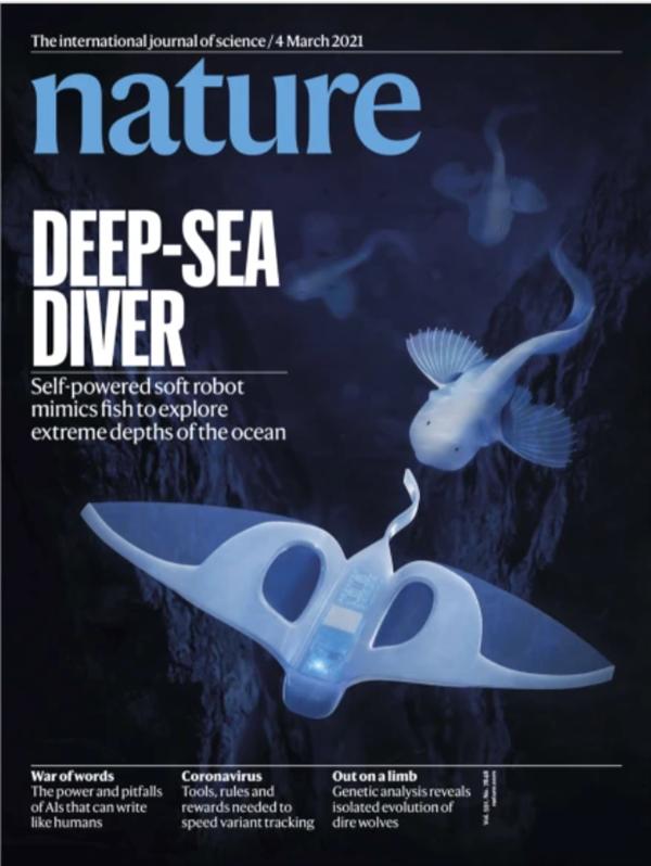 Впервые в мире рыба-робот совершила погружение на глубину 10 000 метров