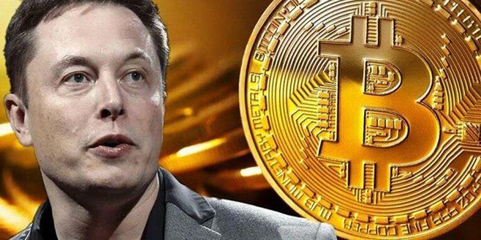 Из-за Илона Маска курс Bitcoin вновь взлетел