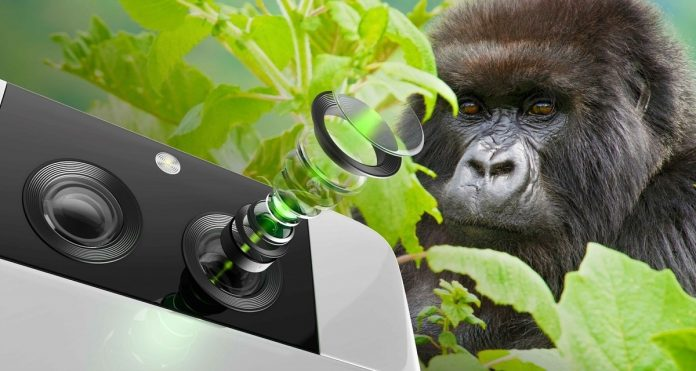Corning представила защитное стекло Gorilla Glass DX, которое даст возможность создавать фотографии профессионального уровня