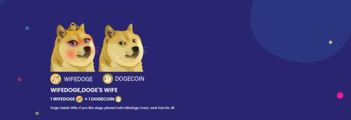 Клон Dogecoin взлетел почти на 1000% за один день