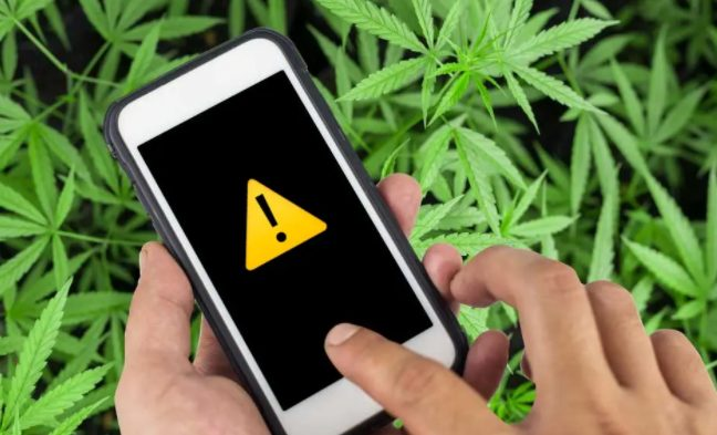 Смартфоны Xiaomi, Samsung и Apple смогут автоматически определять состояние наркотического опьянения
